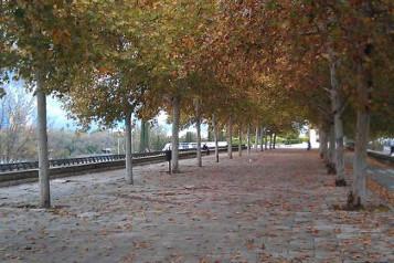 Otoño, una época dorada para visitar Sevilla